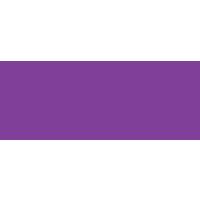 Health Data Analytics logo
